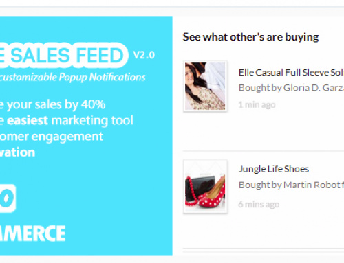 [Plugin Review] WooCommerce Live Sales Feed